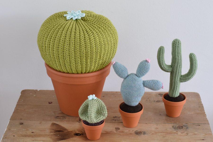 Magnifiek Extreem Cactus Haken Nederlands Patroon PW17 | Belbin.Info &FU18