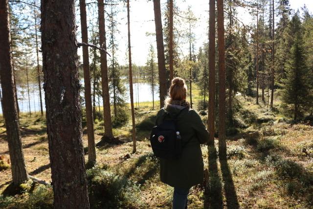 Lapland…de reis van mijn leven!